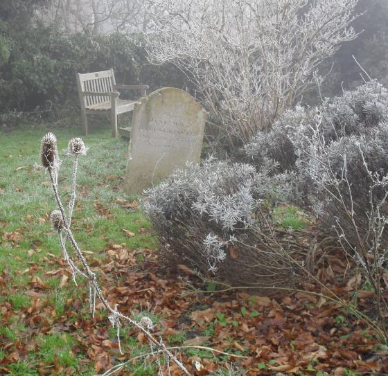 frost-on-the-tombstone-liz