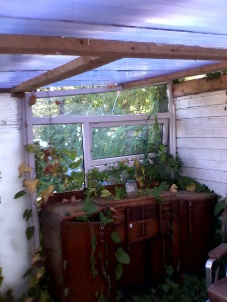 sp-overgrown-summer-house