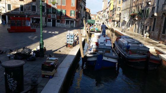 Friday Fictioneers – One MoreRiver